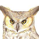 Owl by DeepSpaceAce