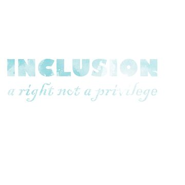 Great for all occassions Inclusion Tee Not a privilege by Customdesign200