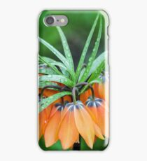 Crown Imperials  iPhone Case/Skin