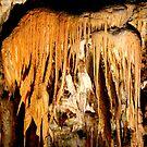 Postojna Cave by annalisa bianchetti