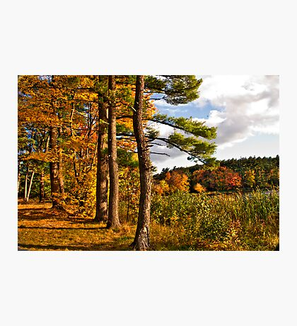 Fall in NH Photographic Print