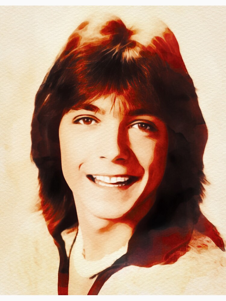 « David Cassidy, Star d'Hollywood » par SerpentFilms