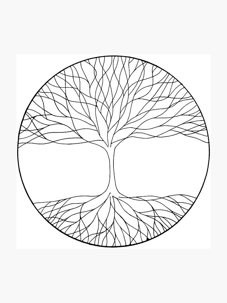 Black And White Minimalist Tree Of Life Photographic Print