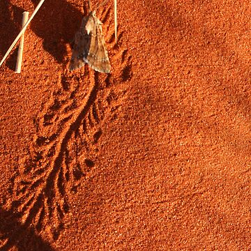 Making tracks... by A1000WORDS