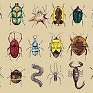 Further Entomology Studies  by djrbennett