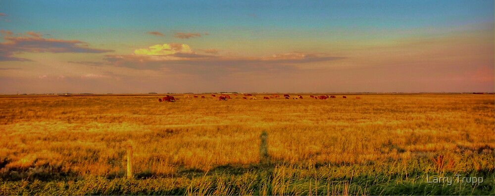 Home on the Range by Larry Trupp