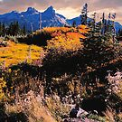 Fall On the Tatoosh Mt. Range by Nancy Richard