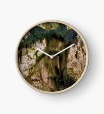 Hoh Rain Forest Clock