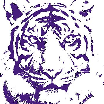 Royal Tiger Gameday Dress | Bayou Bengal Purple by CollegeTown