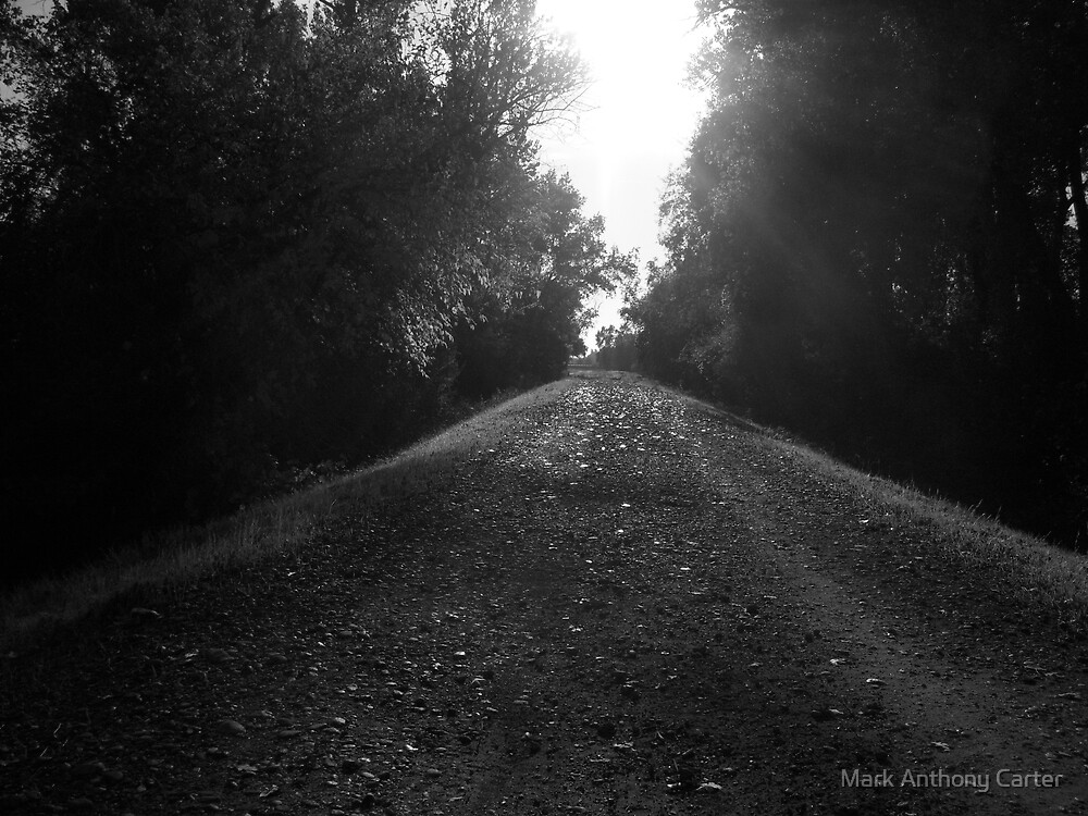 The road less traveled by Mark Anthony Carter