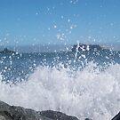 Splash by Mark Anthony Carter