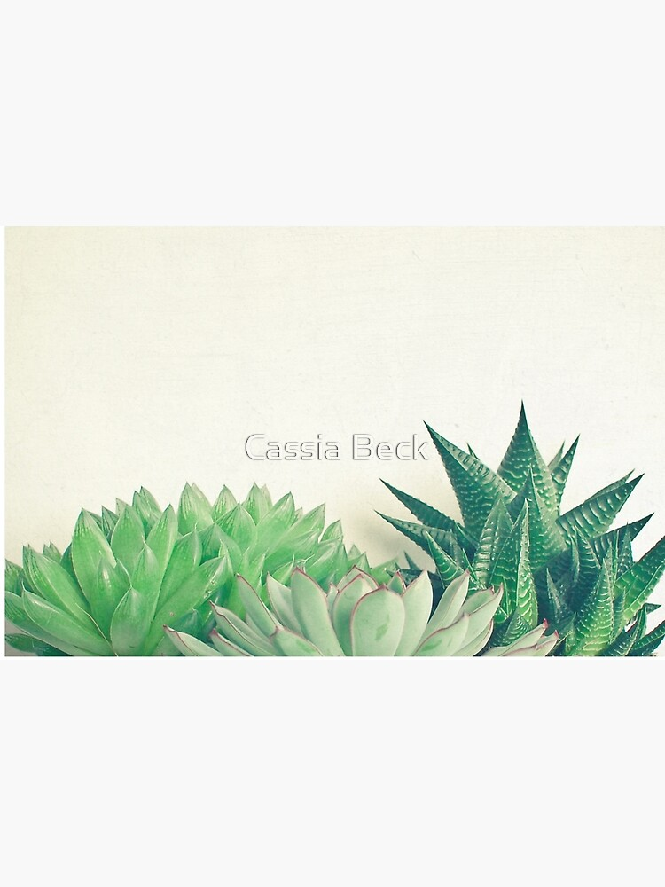 Succulent Forest by Cassia