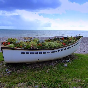 Boat Garden - By the Sea by Vaengi