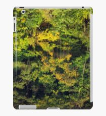 Autumn reflections in the Rhone river iPad Case/Skin