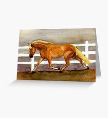 Haflinger Horse Portrait Greeting Card