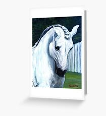 Andalusian Horse Portrait Greeting Card