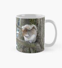 Écureuil Mug