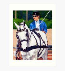 Quarter Horse Pleasure Driving Horse Portrait Art Print