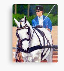 Quarter Horse Pleasure Driving Horse Portrait Metal Print
