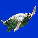 Sea Turtle by philosophizer
