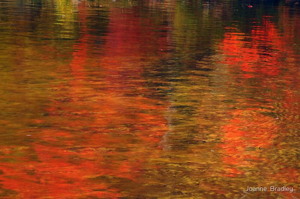 Autumn Leaves by Joanne  Bradley