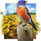western bluebird male t-shirt design by R Christopher  Vest