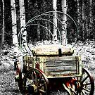 Uncovered Wagon II by Al Bourassa