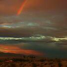 Desert Promise by Barbara  Brown