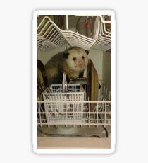 Dishwasher Possum  Sticker