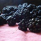 Blackberry Harvest by ReveLinWonder