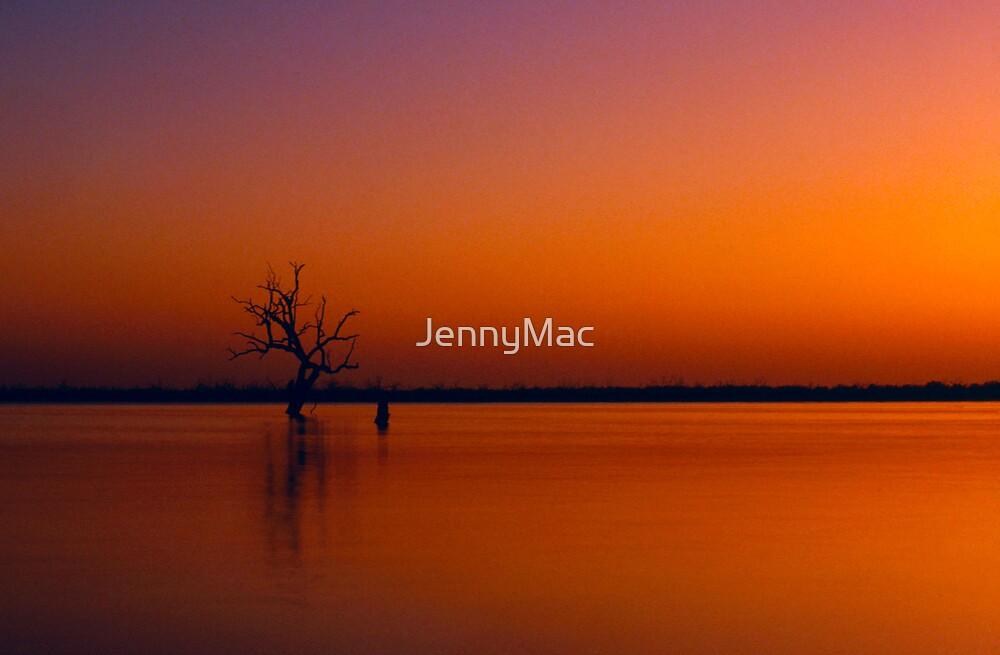 Contemplation by JennyMac