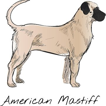 American Mastiff Vintage Style Drawing by efomylod