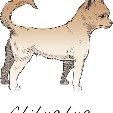 Chihuahua Vintage Style Drawing by efomylod