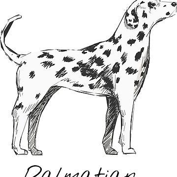 Dalmatian Vintage Style Drawing by efomylod