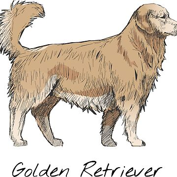 Golden Retriever Vintage Style Drawing by efomylod