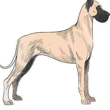 Great Dane Vintage Style Drawing by efomylod