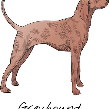Greyhound Vintage Style Drawing by efomylod