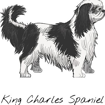 King Charles Spaniel Vintage Style Drawing by efomylod