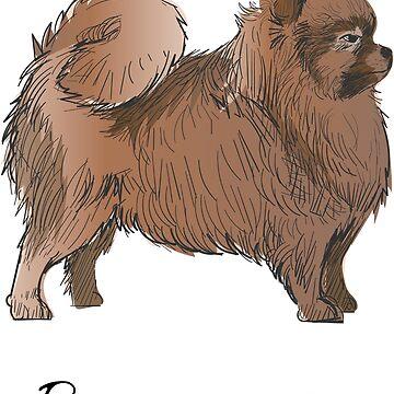 Pomeranian Vintage Style Drawing by efomylod