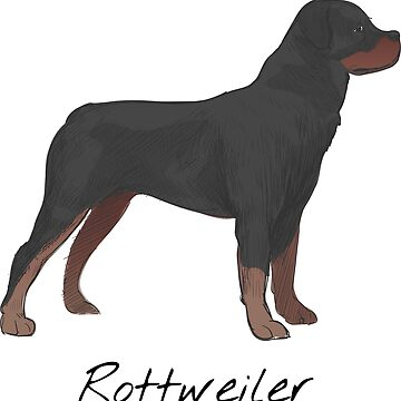 Rottweiler Vintage Style Drawing by efomylod