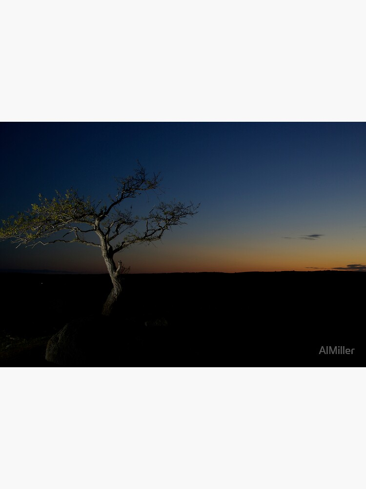 Sunset Season by AlMiller