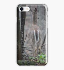 Deer Looks in Ravine iPhone Case/Skin