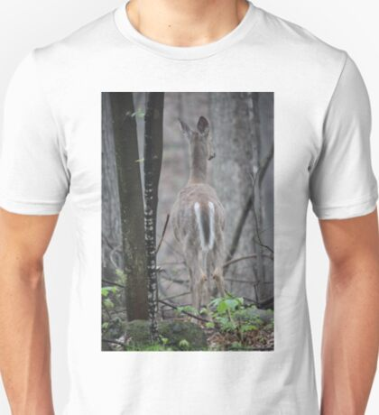 Deer Looks in Ravine T-Shirt