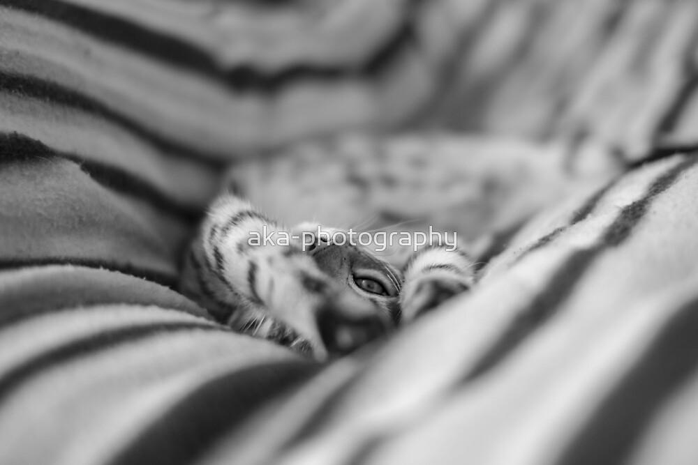 Spots on stripes by aka-photography