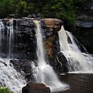 Blackwater Falls State Park by leslie wood