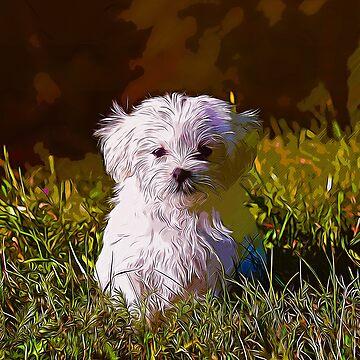 gxp maltese dog vector art by gxp-design