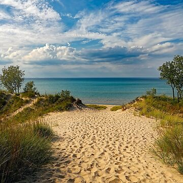 Beach with dunes by NaCl01