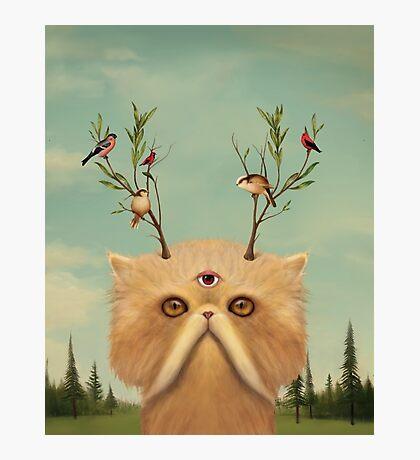 Cat Deity Photographic Print