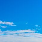 Big Sky Parkes by Michael Frost