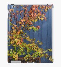 Acer in the back garden iPad Case/Skin